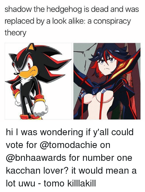 shadow the hedgehog: shadow the hedgehog is dead and was  replaced by a look alike: a conspiracy  theory hi I was wondering if y'all could vote for @tomodachie on @bnhaawards for number one kacchan lover? it would mean a lot uwu - tomo killlakill