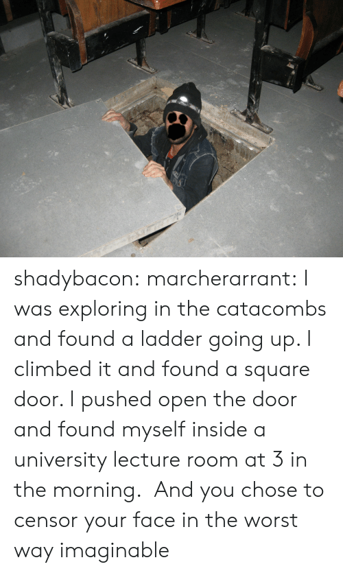 Pushed: shadybacon: marcherarrant: I was exploring in the catacombs and found a ladder going up. I climbed it and found a square door. I pushed open the door and found myself inside a university lecture room at 3 in the morning.  And you chose to censor your face in the worst way imaginable