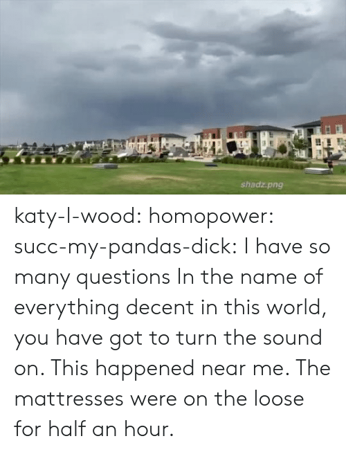 Katy: shadz.png katy-l-wood: homopower:  succ-my-pandas-dick:  I have so many questions   In the name of everything decent in this world, you have got to turn the sound on.   This happened near me. The mattresses were on the loose for half an hour.