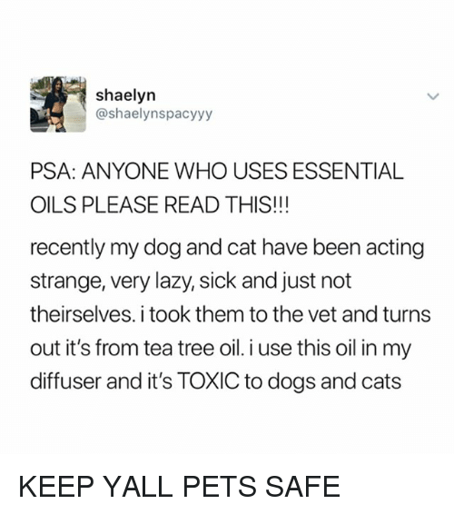 Cats, Dogs, and Lazy: shaelyn  @shaelynspacyyy  PSA: ANYONE WHO USES ESSENTIAL  OILS PLEASE READ THIS!!!  recently my dog and cat have been acting  strange, very lazy, sick and just not  theirselves. i took them to the vet and turns  out it's from tea tree oil.i use this oil in my  diffuser and it's TOXIC to dogs and cats KEEP YALL PETS SAFE