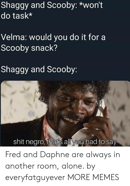 daphne: Shaggy and Scooby: *won't  do task*  Velma: would you do it for a  Scooby snack?  Shaggy and Scooby  shit negro, thats all you had to say Fred and Daphne are always in another room, alone. by everyfatguyever MORE MEMES