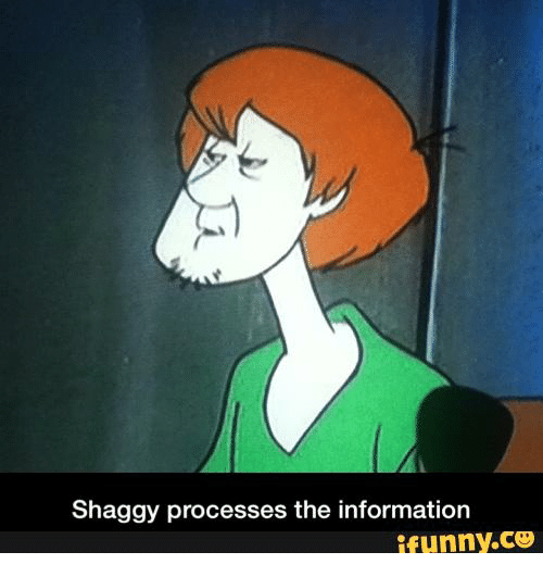 Shaggy Processes The Information Ifunnyco Information