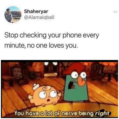 Nerve: Shaheryar  @Alamaiqball  Stop checking your phone every  minute, no one loves you.  You have a lot of nerve being right