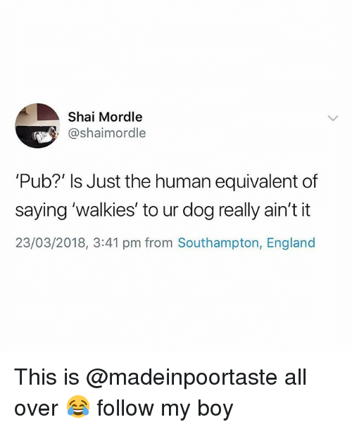 England, British, and Boy: Shai Mordle  @shaimordle  'Pub?' Is Just the human equivalent of  saying 'walkies' to ur dog really ain't it  23/03/2018, 3:41 pm from Southampton, England This is @madeinpoortaste all over 😂 follow my boy
