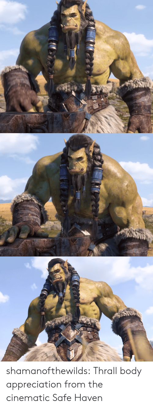Cinematic: shamanofthewilds:  Thrall body appreciation from the cinematic Safe Haven