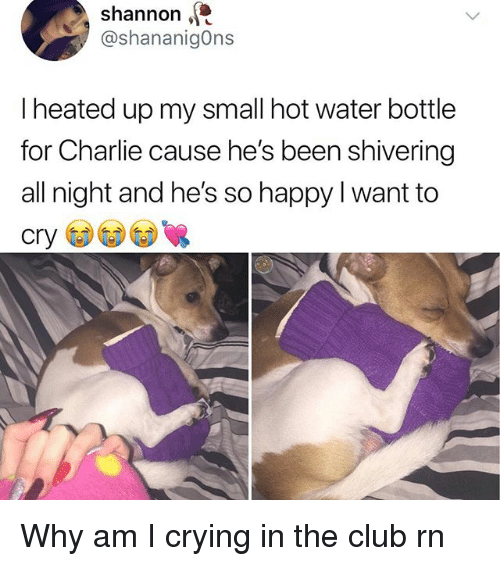 Charlie, Club, and Crying: shannon  @shananigOns  I heated up my small hot water bottle  for Charlie cause he's been shivering  all night and he's so happy I want to Why am I crying in the club rn