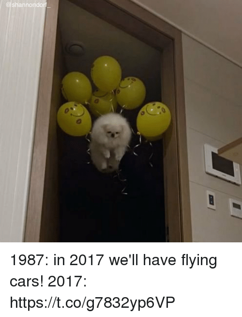 Cars, Girl Memes, and Flying Cars: @shannondorf 1987: in 2017 we'll have flying cars! 2017: https://t.co/g7832yp6VP