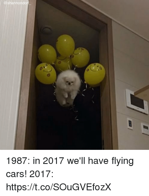 Cars, Girl Memes, and Flying Cars: @shannondorf 1987: in 2017 we'll have flying cars! 2017: https://t.co/SOuGVEfozX