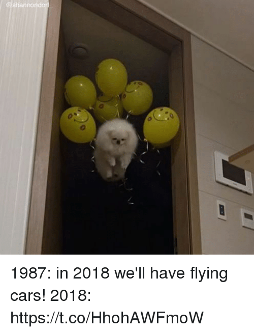SIZZLE: shannondorf 1987: in 2018 we'll have flying cars! 2018: https://t.co/HhohAWFmoW