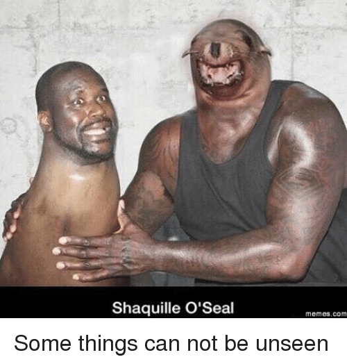 can not be unseen: Shaquille O' Seal  Memes, com Some things can not be unseen