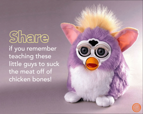 Teaching: Share  if you remember  teaching these  little guys to suck  the meat off of  chicken bones!