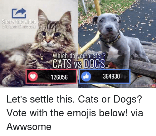cat-or-dog: Share this video  & let your frienisvoitel  Which  do  CATS VS DOGS  126056  364930  LUESTAFFYO Let's settle this. Cats or Dogs? Vote with the emojis below!  via Awwsome
