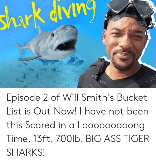 Bucket list: shark divn Episode 2 of Will Smith's Bucket List is Out Now!  I have not been this Scared in a Looooooooong Time.  13ft. 700lb. BIG ASS TIGER SHARKS!
