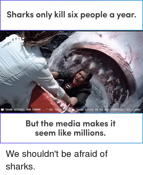 """Usa Today: Sharks only kill six people a year.  """"SHARK ATTACKS: HOW COMMON  """" USA TODAY 201  """"SHARK ATTACK IN THE MEDITERRANEAN,"""" RTL (2004)  But the media makes if  seem like millions We shouldn't be afraid of sharks."""