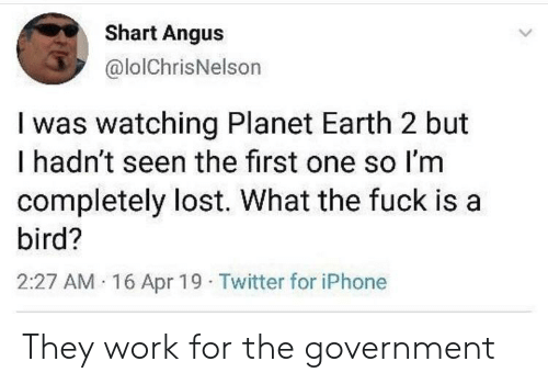 angus: Shart Angus  @lolChrisNelson  I was watching Planet Earth 2 but  I hadn't seen the first one so I'm  completely lost. What the fuck is a  bird?  2:27 AM 16 Apr 19 Twitter for iPhone They work for the government