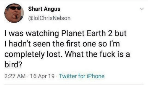 angus: Shart Angus  @lolChrisNelson  I was watching Planet Earth 2 but  I hadn't seen the first one so I'm  completely lost. What the fuck is a  bird?  2:27 AM 16 Apr 19 Twitter for iPhone