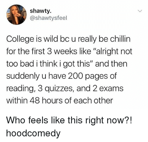 "Hoodcomedy: shawty.  @shawtysfeel  College is wild bc u really be chillin  for the first 3 weeks like ""alright not  too bad i think i got this"" and then  suddenly u have 200 pages of  reading, 3 quizzes, and 2 exams  within 48 hours of each other Who feels like this right now?! hoodcomedy"
