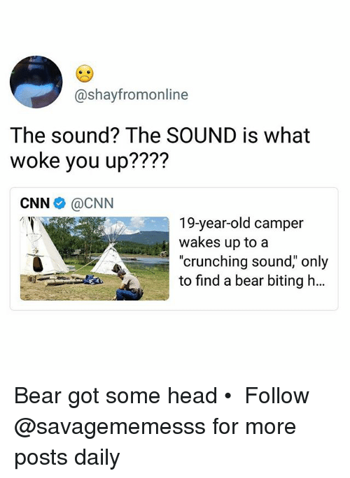 "cnn.com, Head, and Memes: @shayfromonline  The sound? The SOUND is what  woke you up????  CNN e》 @CNN  19-year-old camper  wakes up to a  ""crunching sound,"" only  to find a bear biting h… Bear got some head • ➫➫ Follow @savagememesss for more posts daily"