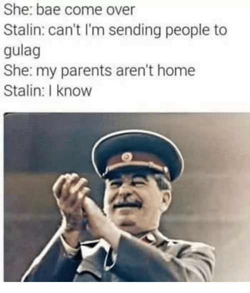 Stalinator: She: bae come over  Stalin: can't I'm sending people to  gulag  She: my parents aren't home  Stalin: I know
