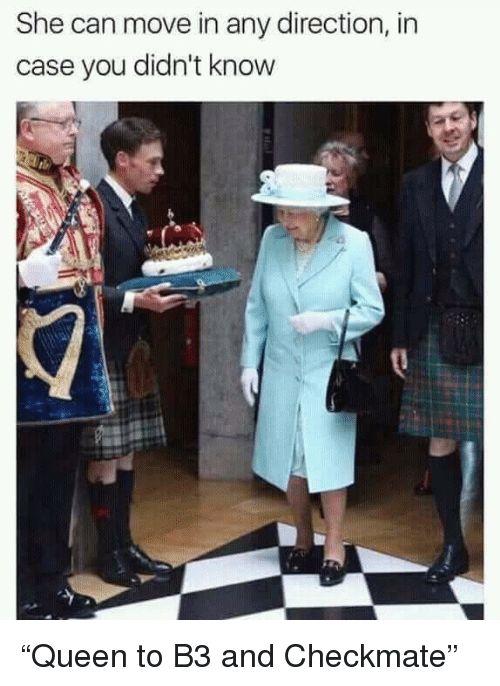 """Funny, Can, and Case: She can move in any direction, in  case you didn't know """"Queen to B3 and Checkmate"""""""