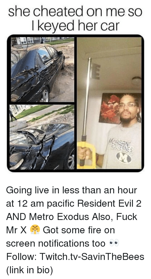 Exodus: she cheated on me so  I keyed her car  IOLVERINES Going live in less than an hour at 12 am pacific Resident Evil 2 AND Metro Exodus Also, Fuck Mr X 😤 Got some fire on screen notifications too 👀 Follow: Twitch.tv-SavinTheBees (link in bio)