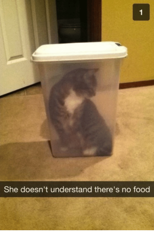 no food: She doesn't understand there's no food