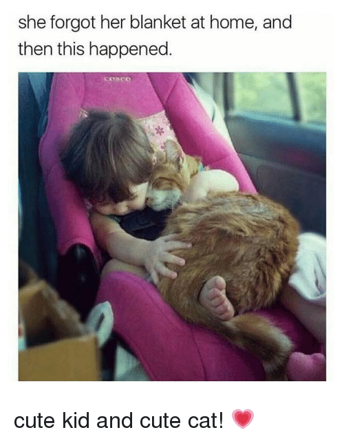 cute cat: she forgot her blanket at home, and  then this happened cute kid and cute cat! 💗