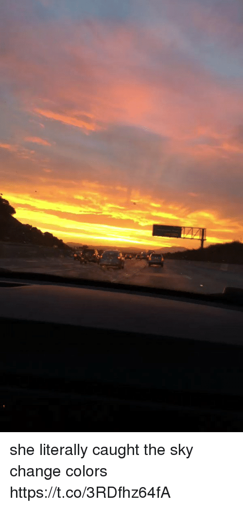 Funny, Change, and Sky: she literally caught the sky change colors https://t.co/3RDfhz64fA