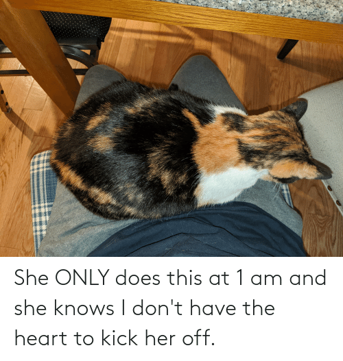 the heart: She ONLY does this at 1 am and she knows I don't have the heart to kick her off.