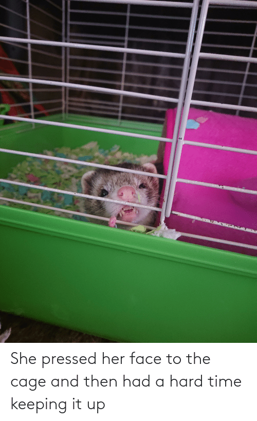 Pressed: She pressed her face to the cage and then had a hard time keeping it up