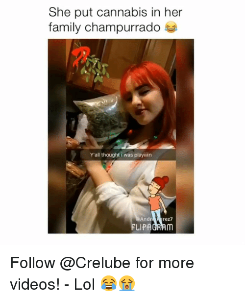 andr: She put cannabis in her  family champurrado  Y'all thought i was playiiin  Andr  FLIPAGRAm Follow @Crelube for more videos! - Lol 😂😭