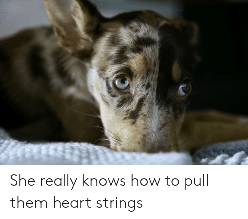 heart strings: She really knows how to pull them heart strings