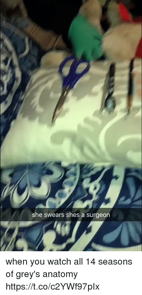 Grey's Anatomy, Watch, and Girl Memes: she swears shes a surgeon when you watch all 14 seasons of grey's anatomy https://t.co/c2YWf97pIx
