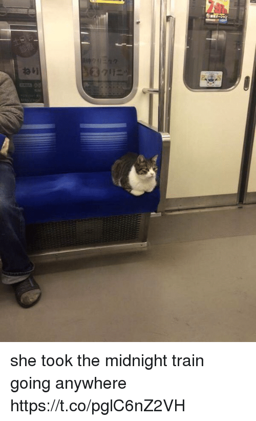 Train, Girl Memes, and Midnight: she took the midnight train going anywhere https://t.co/pglC6nZ2VH