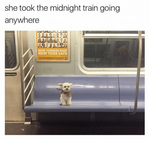 Dank, Lean, and New York: she took the midnight train going  anywhere  NEW YORKERS KEEP  NEW YORK SAFE  t lean on door