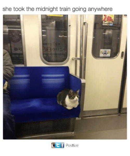 Took The Midnight Train Going Anywhere