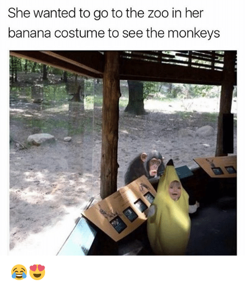 Memes, Banana, and 🤖: She wanted to go to the zoo in her  banana costume to see the monkeys 😂😍