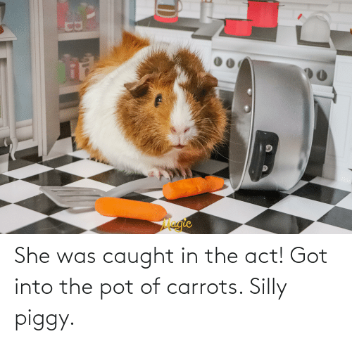 pot: She was caught in the act! Got into the pot of carrots. Silly piggy.