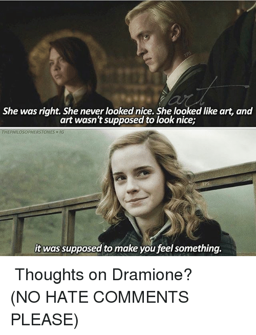 Memes, Never, and Nice: She was right. She never looked nice. She looked like art, and  art wasn't supposed to look nice;  THEPHILOSOPHERSTONES-IG  it was supposed to make you feel something. ⠀⠀⠀⠀↡ Thoughts on Dramione? (NO HATE COMMENTS PLEASE)
