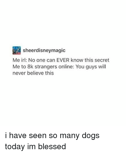 Blessed, Dogs, and Memes: sheerdisneymagic  Me irl: No one can EVER know this secret  Me to 8k strangers online: You guys will  never believe this i have seen so many dogs today im blessed