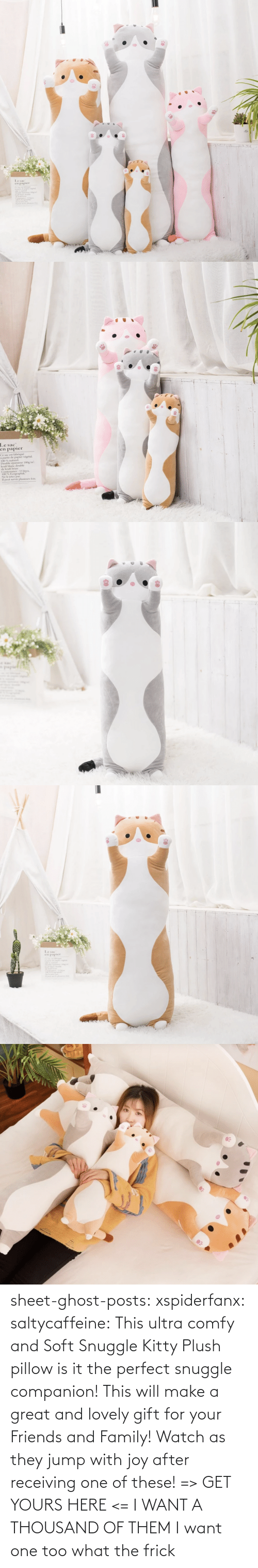 I Want A: sheet-ghost-posts: xspiderfanx:  saltycaffeine:  This ultra comfy and Soft Snuggle Kitty Plush pillow is it the perfect snuggle companion! This will make a great and lovely gift for your Friends and Family! Watch as they jump with joy after receiving one of these! => GET YOURS HERE <=    I WANT A THOUSAND OF THEM  I want one too what the frick