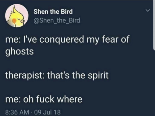 Thats The Spirit: Shen the Bird  @Shen_the_Bird  me: I've conquered my fear of  ghosts  therapist: that's the spirit  me: oh fuck where  8:36 AM 09 Jul 18