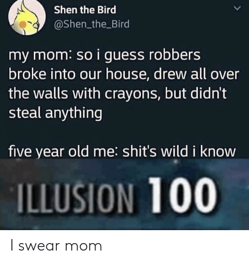 crayons: Shen the Bird  @Shen_the Bird  my mom: so i guess robbers  broke into our house, drew all over  the walls with crayons, but didn't  steal anything  five year old me: shit's wild i know  ILLUSION 100 I swear mom