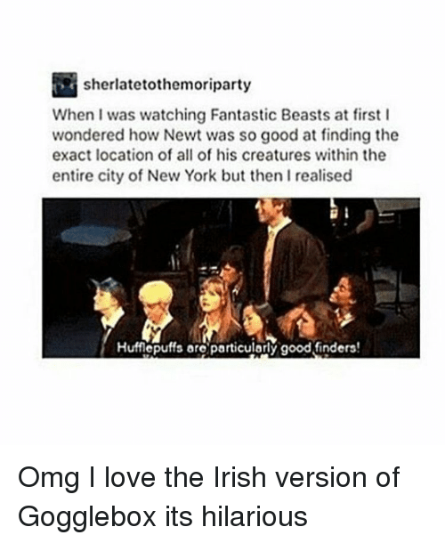 Irish, Memes, and New York: sherlatetothemoriparty  When I was watching Fantastic Beasts at first I  wondered how Newt was so good at finding the  exact location of all of his creatures within the  entire city of New York but then Irealised Omg I love the Irish version of Gogglebox its hilarious