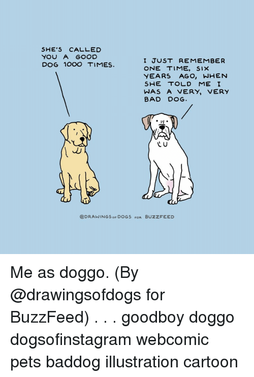 Bad, Dogs, and Memes: SHE'S CALLED  YOU A GOOD  DOG 1OOO TIMES  I JUST REMEMBER  ONE TIME, SIX  YEARS AGO, WHENN  SHE TOLD ME I  WAS A VERY, VERY  BAD DOG.  C U  @DRAWINGS OF DOGS FOR BUZZFEED Me as doggo. (By @drawingsofdogs for BuzzFeed) . . . goodboy doggo dogsofinstagram webcomic pets baddog illustration cartoon
