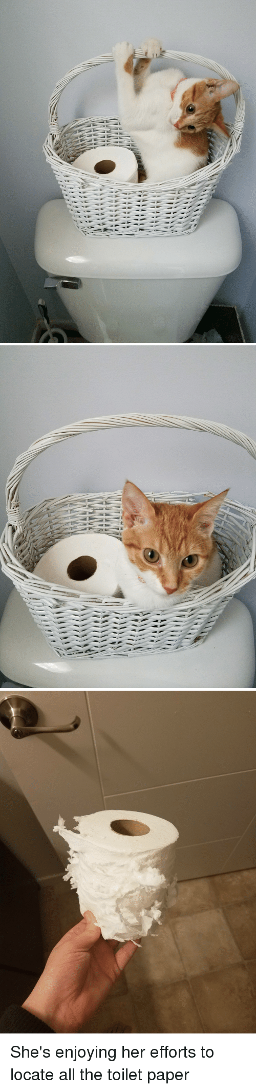All The, Her, and Paper: She's enjoying her efforts to locate all the toilet paper
