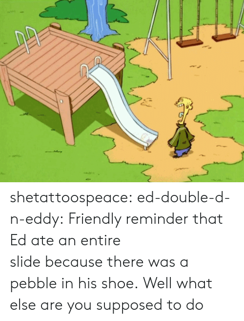 N Eddy: shetattoospeace:  ed-double-d-n-eddy:  Friendly reminder that Ed ate an entire slidebecausethere was a pebble in his shoe.  Well what else are you supposed to do