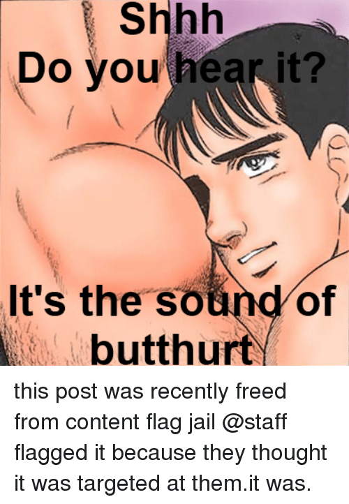Butthurt: Shhh  vou hear it?  Do  It's the sound of  butthurt   this post was recently freed from content flag jail  @staff flagged it because they thought it was targeted at them.it was.