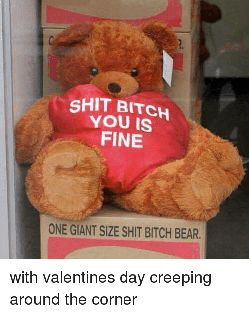Shit Bitch You Fine: SHIT BITCH  YOU FINE  ONE GIANT SIZE SHIT BITCH BEAR. with valentines day creeping around the corner