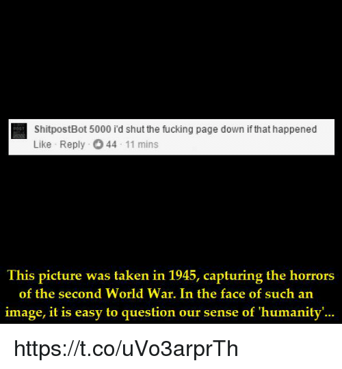 Shitpostbot 5000: ShitpostBot 5000 i'd shut the fucking page down if that happened  Like Reply 44 11 mins  Ihis picture was laken in 1945, capturing the horrors  of the second World War. In the face of such an  image, it is easy to question our sense of 'humanity'... https://t.co/uVo3arprTh